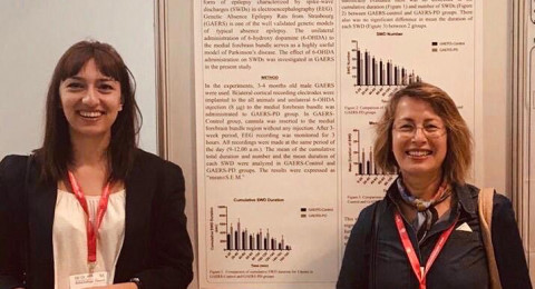 The article of Asst. Prof. Dr. Melis Yavuz as the first author and Prof. Dr. Filiz Onat as the corresponding author, has been published in the journal Epilepsia